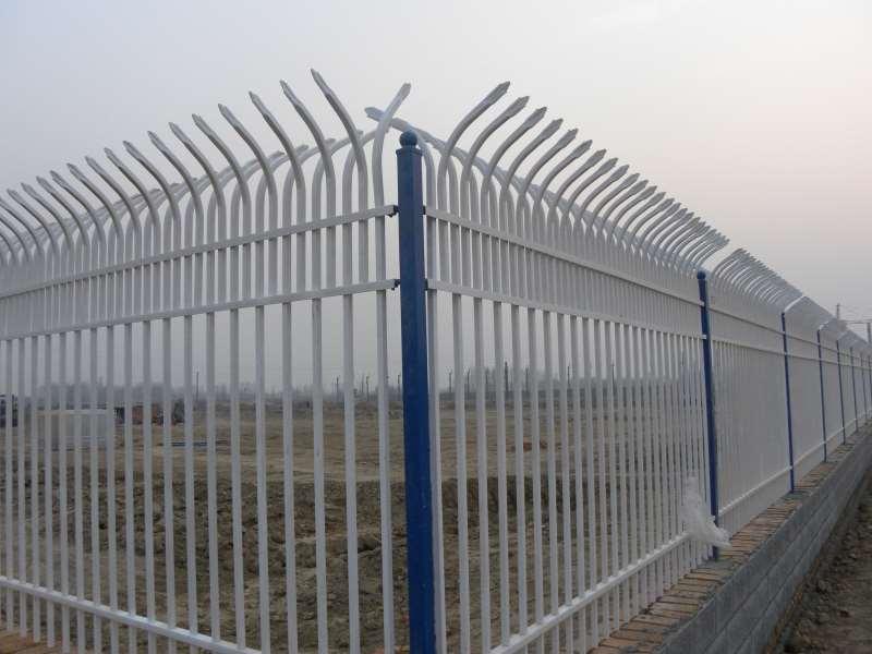 锌钢绿化护栏公司